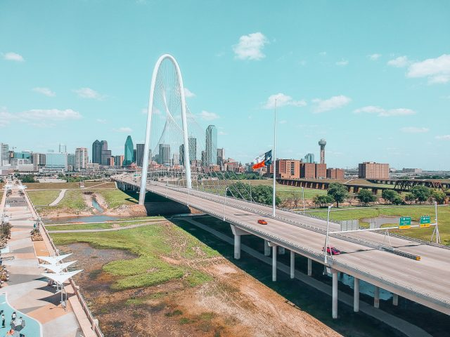 Dallas by Michelle Stelly