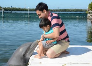 Meet the dolphin at Dolphin Research Centre in Maraton, Florida