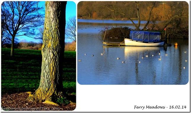 Ferry Meadows