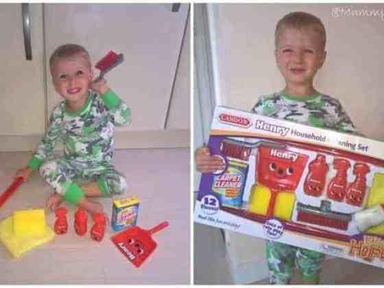 Casdon Henry Cleaning Set