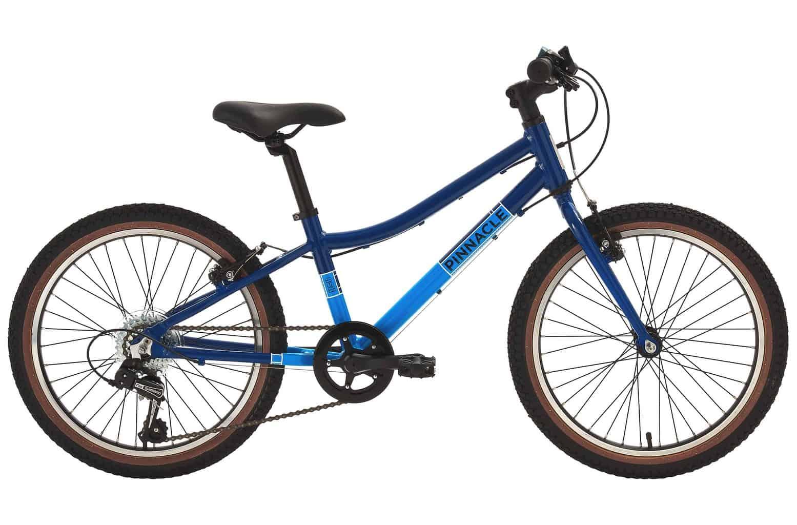 Pinnacle Ash 20in kids bike
