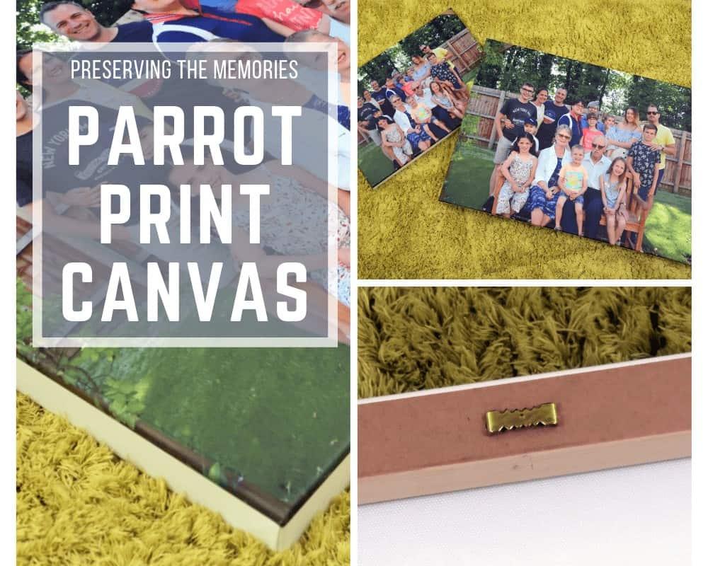 Parrot Print Canvas