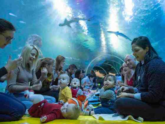 baby sensory at Sealife