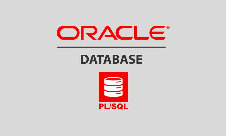Oracle Database PL/SQL