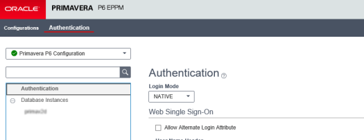 P6 Administration screen - Authentication tab
