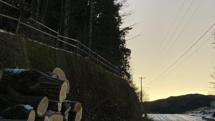 DIYで支障木伐採して雪対策&薪GET