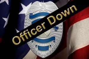 PL_officer_down_crop380w