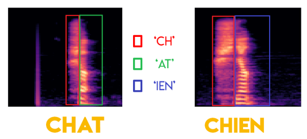 mel spectrogramme chat chier