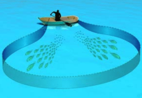 Encircling gillnet