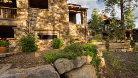 Native shrubs and vines accenting limestone retaining walls