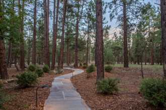 Walkway accentuated by native plantings