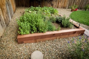 Raised planter bed surrounded by gravel and native plantings