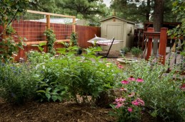 Backyard detail complete with privacy trellis, perennial plantings, and shrubs.