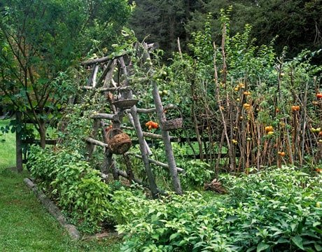 Potager Garden Style: Combining Edible & Flowering Plants In the French Tradition, garden planning, germinate, ideas, homestead, farm, sustainable, seeds, 4x8 boxes, herbs, flowers, annuals, perrenials, growing edibles, ornamentals, balconies, patios, porches, rooftops, kitchen beds of England, compositions of French, Smithsonian Garden education specialist, Cynthia Brown, rot-resistant cedar, aesthetic design, layout, plot, landscape, quotes, botanist, zinnia, nasturtiums, raised beds, trellises, espalier, lettuces, herbs, formal or rustic design, Monet, Matthew 19: 23, plan, DIY, homemaking, keeper at home, tomatoes, rustic garden