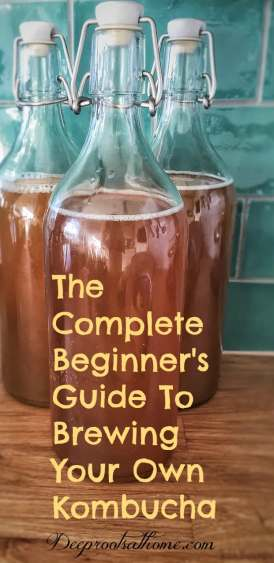 A Complete Beginner's Guide To Brewing Your Own Kombucha, DIY, keeper of the home, healing remedies, health benefits, natural medicine chest, the old ways, scoby, symbiotic colony of bacteria and yeast, white sugar, tea bags, fermentation, fermenting, raw, probiotic, restoring the gut, black tea, brewing kombucha, organic sugar,
