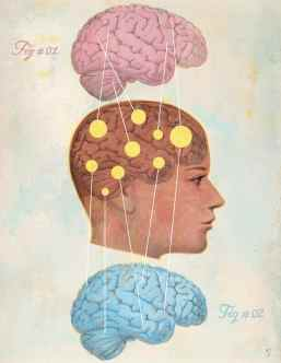 4 Crucial Brain Differences Between Genders: Facts To Refute Tyrannical Gender Ideology, Gregory Jantz, boys, girls, research, science, male, female, brains, processing, chemistry, structure, activity, men, women, gender rule, exceptions, brain function, feelings, talkative, gray matter, white matter, tunnel vision, multi-tasking, hormones, neurochemicals, gender, serotonin, testosterone, aggressive, estrogen, oxytocin, bonding chemical, able to sit still, impulsive, stress, brain size, neural connections, memory center, hippocampus, girls tend to use words more, blood flow, brain activity, emotional processing, concentration, cingulate gyrus, emotional memories, parenting, educating, young children