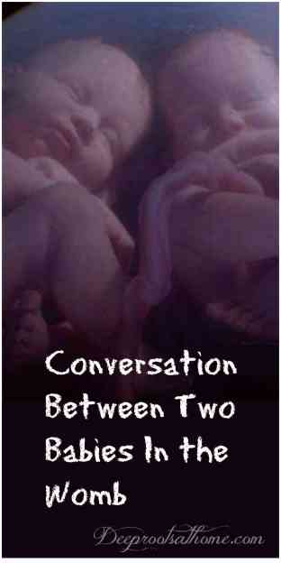 Conversation Between Two Babies In the Womb of a Mother, delivery, life after delivery, womb, babies, twins, talking babies, life, pregnancy, senses, analogy, understanding, limited knowledge, faith, absurdities, umbilical cord, walking, eating, nutrition, logical conclusion, momma, mommie, mom, birthday, birthing, existence, world, doesn't exist, no God, godless, presence, silence, focus, listen, voice, calling, no attribution, 1 Corinthians 2: 9-10, no eye, no ear, imagination, prepared, revealed, Spirit, limbo, athiest, agnostic, belief, believe, death, resurrection, God, omnipotent, omniscient, loving, Christian, afterlife