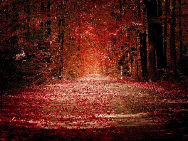 to-autumn