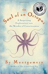 soul-of-octopus