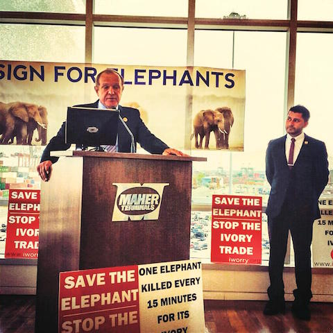 New Jersey State Senator Sen. Raymond J. Lesniak (left) with Assemblyman Raj Mukherji at the Elizabeth Seaport, NJ, this past summer. Both were instrumental in the successful fight to make New Jersey's full ban of ivory sales a reality. 'I feel that it's a moral issue that we protect animals, and don't treat them cruelly,' says Sen. Lesniak, 'and certainly don't do things to destroy their existence on the face of the earth.'