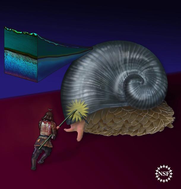 Deep-Sea News