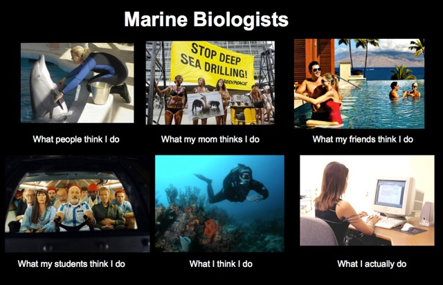 "Title: Marine Biologists. Series of 6 photos with captions ""What my mom thinks I do"", ""What my students think I do"", etc."