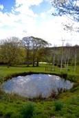 burrows farm gardens - 17