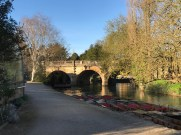 Oxford March 2017 - 140