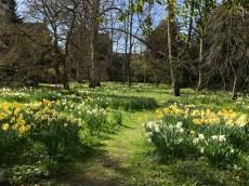 Oxford March 2017 - 50