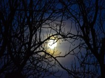 moonfall2