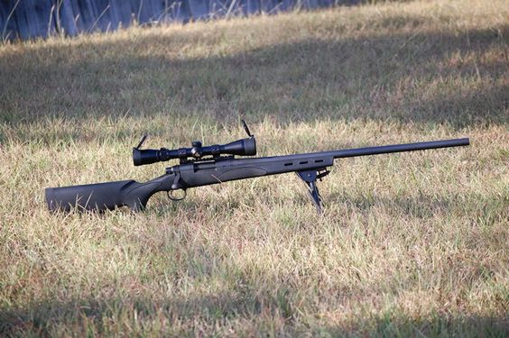 Why a Varmint Scope