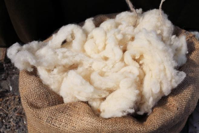 Wool As A Practical And Useful Fiber