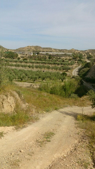 Pathway to Sierrecica, Huercal-Overa