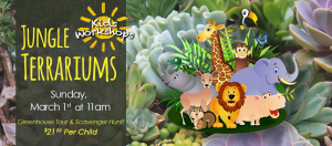 Jungle Terrariums - Kids' Workshop @ Dees' Nursery
