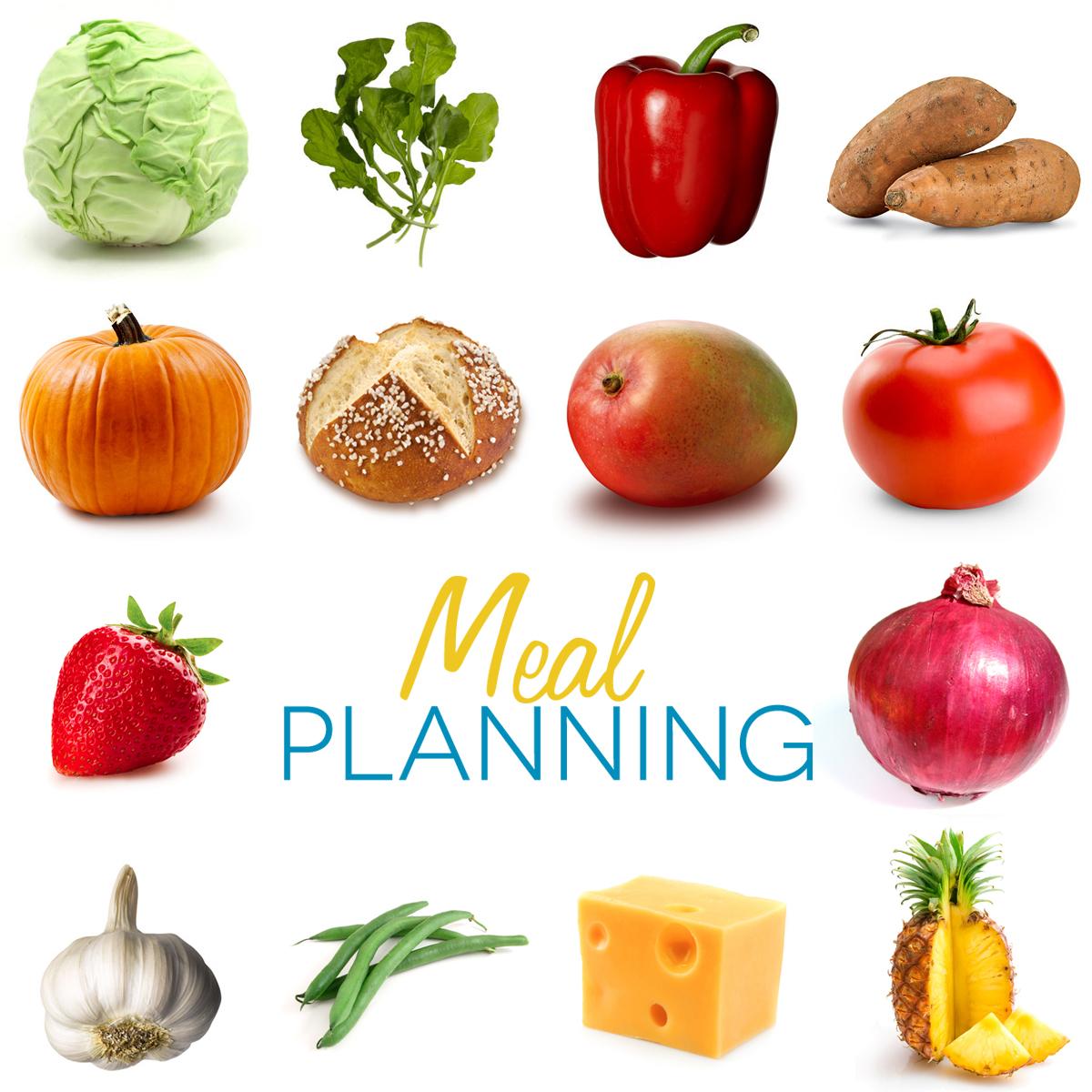 Worksheet On Body Building Foods