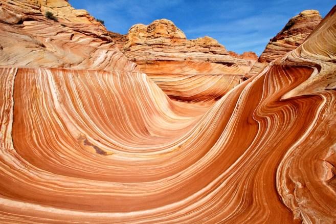 Le bowl - The Wave