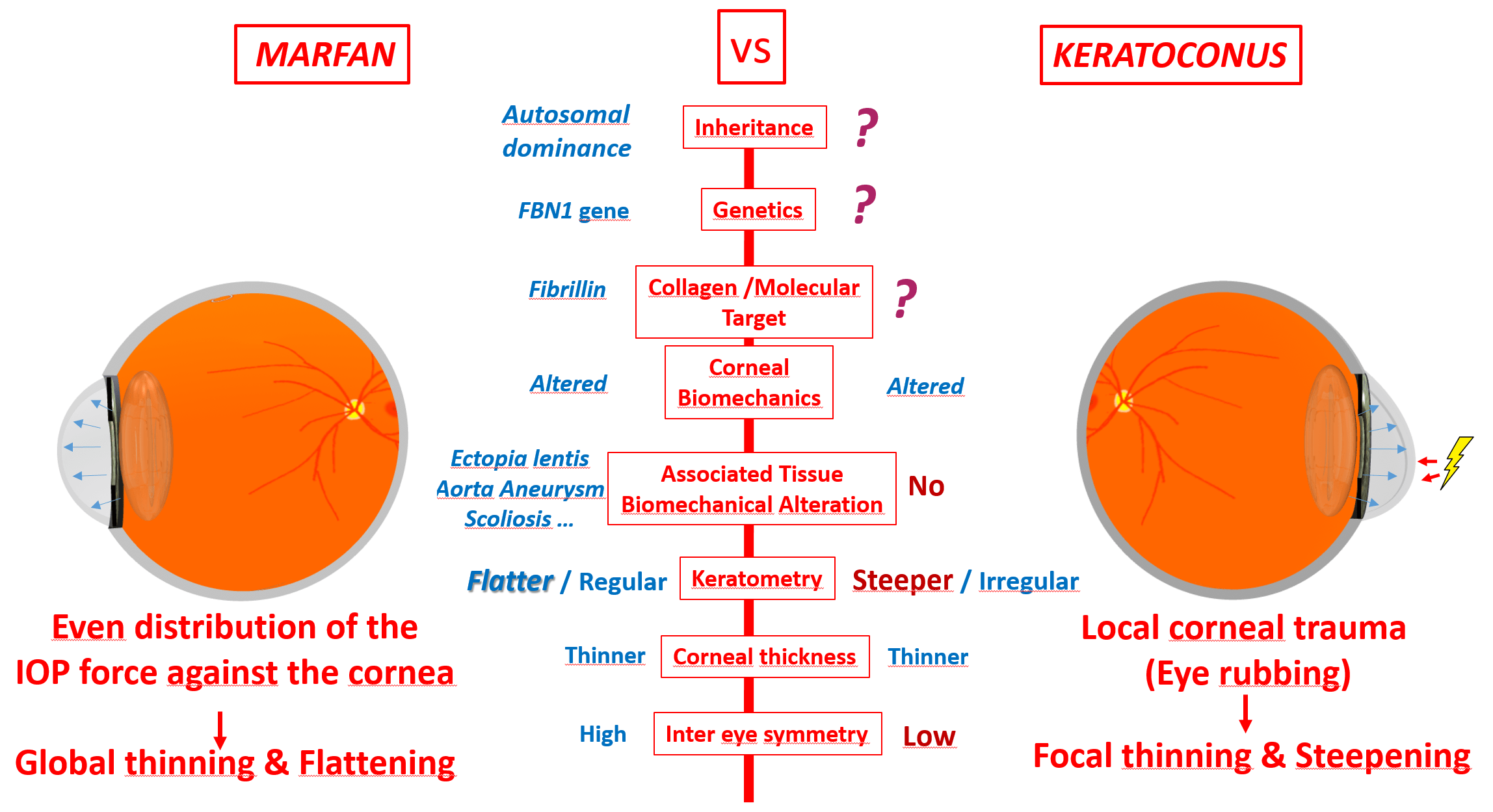 marfan vs keratoconus defeatkeratoconus.com