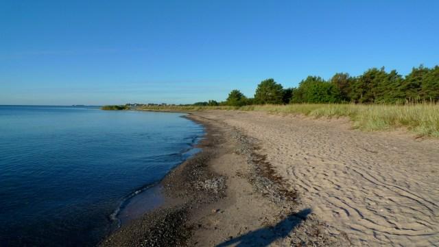 Ljungarn Beach