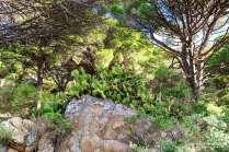Hike near Tarifa