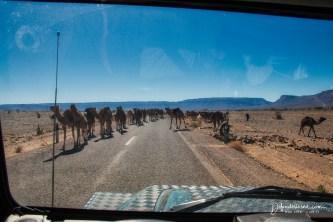 on the road to Zagora