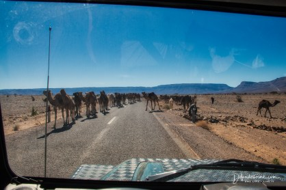 on the road to Zagora