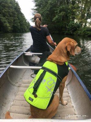 Canoe tour im Spreewald