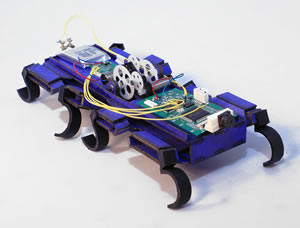 One of the experimental micro-bots evaluated by the MAST group is this OctoRoach.