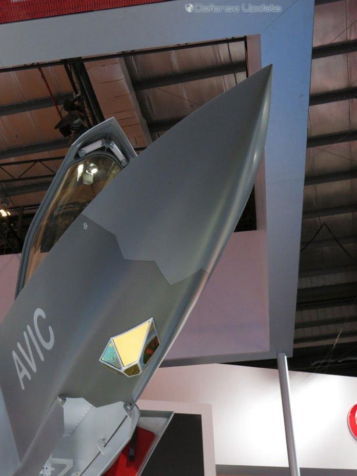 IMG_7173-j31-nose