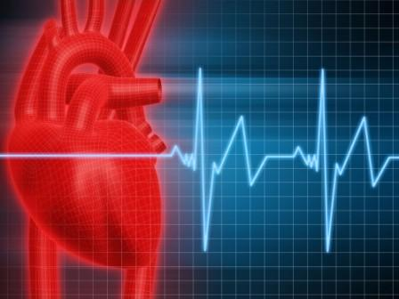 The Heartbeat of CrossFit