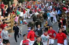 Bullrun in Tudela