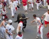 "Rope-held bull in the old town of Teruel in ""Vaquillas"""