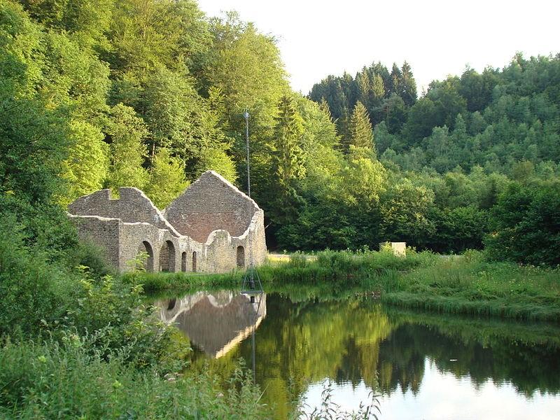 Une image contenant extérieur, eau, herbe, nature  Description générée automatiquement