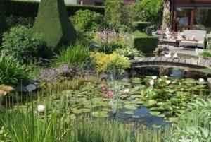 Une prime communale pour aménager une mare au jardin