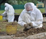 Archaeologists wore protective clothing to prevent contamination of the remains, from the BBC
